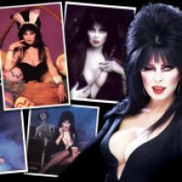 Another New Elvira Wallpaper By Me