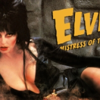 Elvira Halloween Wallpaper #5