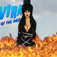 Elvira Halloween Wallpaper #11