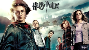 Harry Potter - 06
