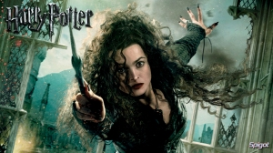 Harry Potter - 16